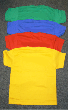 Coloured PE T-shirts with House name